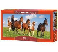 Пазлы Castorland Табун лошадей 600 элементов В-060351