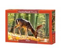 Пазлы Castorland Король леса 500 элементов В-52325
