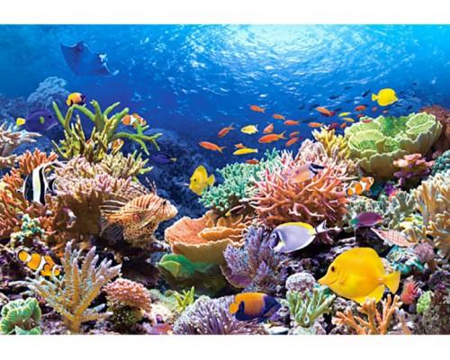 Пазлы Castorland 1000 элементов Коралловый риф C-101511