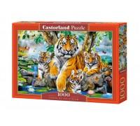 Пазлы Castorland Тигры 1000 элементов С-104413