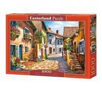Пазлы Castorland Улица в цветах 1000 элементов С-103744