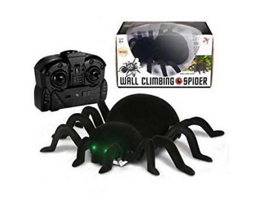 Паук Wall climbing spider ползает по стенам FY878